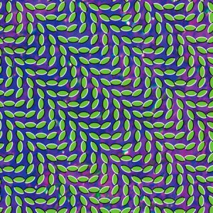 Animal Collective - Merriweather Post Pavilion (Domino 2009)