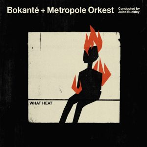 bokante metropol orkest what heat lp vinyl