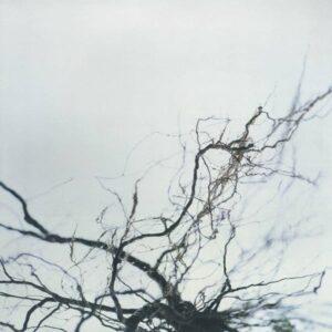 Yutaka Hirose - Nova+4