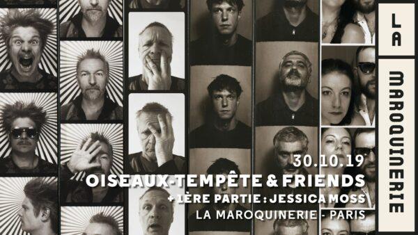 Oiseaux-Tempête & Friends