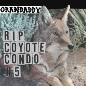 Grandaddy RIP Coyote Condo #5 b/w The Fox In The Snow & In My Room (Belle and Sebastian & Beach Boys covers, limited to 600, indie advance-exclusive Black Friday 2020)
