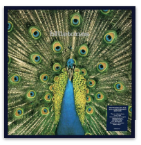 THE BLUETONES EXPECTING TO FLY (25TH ANNIVERSARY)