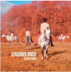 STRANDED HORSE GRAND RODEO